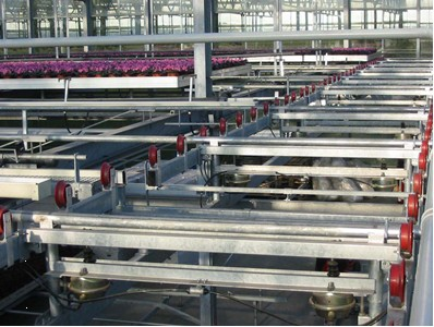 Container_Conveyors_Large
