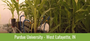 Purdue University Watering System watering corn